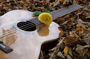 Novembre: musica d'autunno